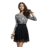 Black Lace Skirt - blskirt